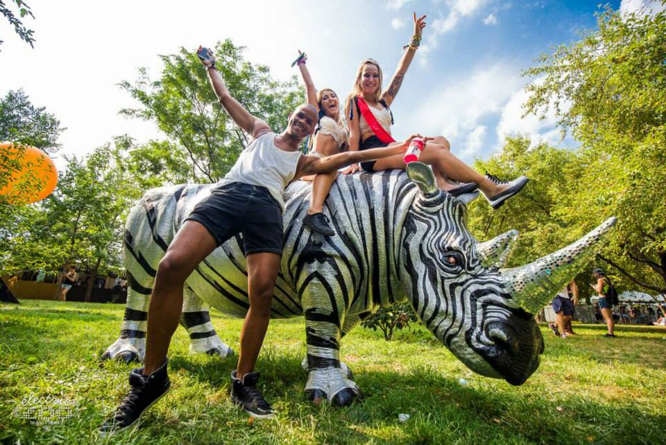 Electric Zoo 2015 2