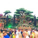 Tomorrowland 2016 picchare 2